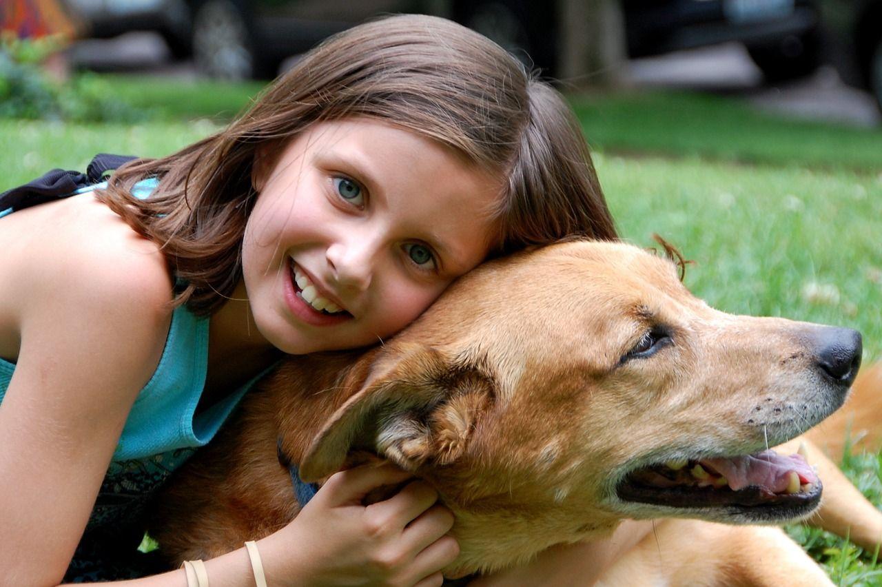 Cuál es el mejor perro para niños