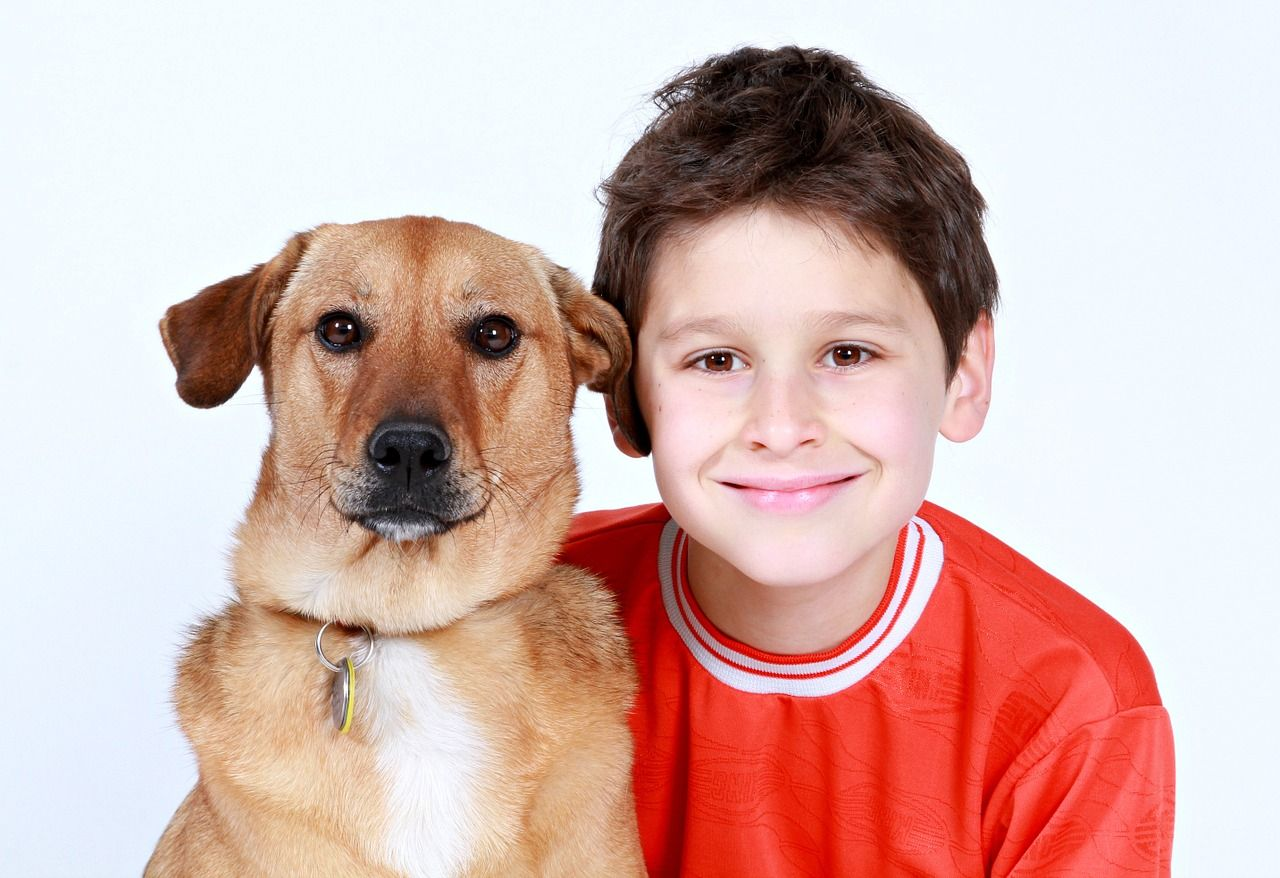 Cómo convencer a tus padres de tener un perro