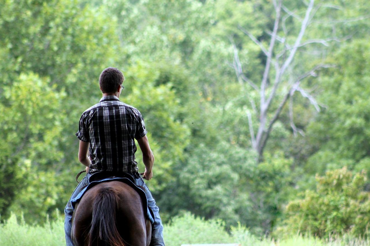 Aprender a montar a caballo: cómo empezar en el mundo de la equitación